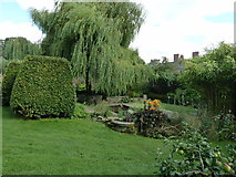 SO4465 : Pond and Willow in the walled gardens at Croft Castle by Dave Spicer