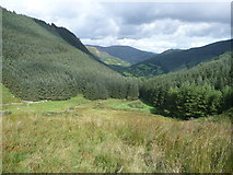 SJ0124 : Looking down Cwm Llech by Jeremy Bolwell