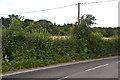 TQ4562 : Cudham Lane North by Ian Capper