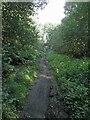 SE3413 : Wakefield wheels trail #1 by Steve  Fareham