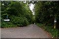 TQ4158 : Paynesfield Road by Ian Capper