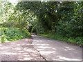 SO9477 : Shut Mill Lane View by Gordon Griffiths