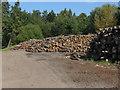SU8967 : Log piles, Blane's Farm by Alan Hunt