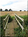 SP9431 : Path to Speedwell farm crosses a ditch by Philip Jeffrey
