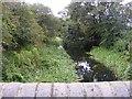 SJ9408 : Oak Lane Bridge View by Gordon Griffiths