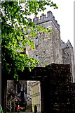 R4560 : Bunratty Folk Park - Site #4 - Entrance to Exterior Castle Courtyard by Suzanne Mischyshyn