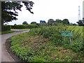 SJ9307 : New Lane by Gordon Griffiths