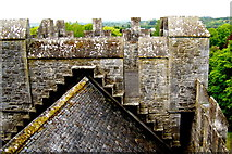 R4560 : Bunratty Castle - NW Tower View - Roof over The Great Hall by Suzanne Mischyshyn