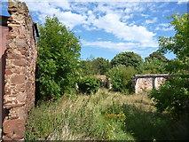 NT6578 : Rural East Lothian : West Barns Farm by Richard West