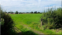 SJ6342 : Footpath into South Cheshire pastures by Jonathan Billinger