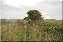 TQ3710 : The South Downs Way - footpath junction by Balmer Down by Trevor Harris