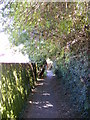 TM3863 : Footpath to Mill Road by Geographer