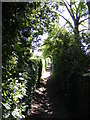 TM3863 : Footpath to the B1121 South Entrance by Adrian Cable
