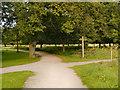 SJ6576 : Paths Meet, Marbury Country Park by David Dixon