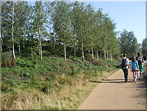 TQ3785 : Path by River Lea by Paul Gillett