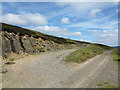 NY9600 : Junction of estate roads in valley of Hard Level Gill by Trevor Littlewood