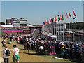 TQ5764 : Brands Hatch paralympics - spectators by Stephen Craven