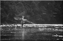 NZ0615 : River Tees by Peter McDermott