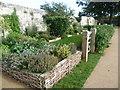TQ4109 : The Herb Garden, Lewes Priory by Marathon