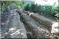 TQ9635 : Rutted Track off Coldblow Lane by Julian P Guffogg
