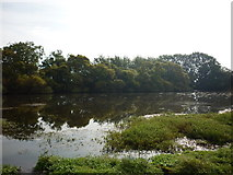 NY1853 : The pond at Salt Coats by Ian S
