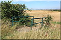 TL3651 : Bridleway bridge leading to Little Eversden by Rob Noble