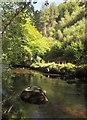 SX7389 : River Teign by Derek Harper
