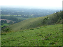 TQ2452 : The scarp slope at Colley Hill by Marathon