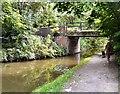 SJ9395 : Dunkirk Lane Bridge by Gerald England