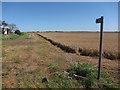 TL5287 : Footpath off Main Drove by Hugh Venables