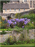 SP5105 : Christ Church College Garden by Chris Andrews