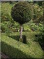 NJ7900 : Topiary work inside the walled garden by Stanley Howe