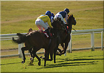 TQ2258 : The 2pm at Epsom by Carl Ayling