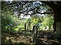 TR1557 : Canterbury - St Martin's Church - churchyard by Rob Farrow