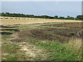 TL1060 : Farm track off St Neots Road by JThomas