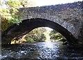 NY3603 : Brathay Bridge by Anthony Parkes