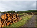 NS7382 : Forestry track and log piles (1), Kilsyth Hills by Alan O'Dowd