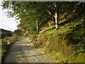 SN7399 : Glyndwr's Way by Derek Harper