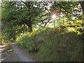 SN7499 : Glyndwr's Way by Derek Harper