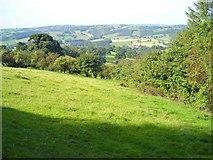 SK2952 : Woods and fields near Holehouse Farm by Antony Dixon