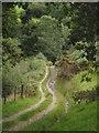 SN8195 : Bridleway, Cwm-hafod-march by Derek Harper