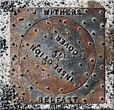 J6268 : Manhole cover, Ballywalter Park by Rossographer
