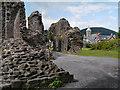 SO2913 : Abergavenny Castle Remains by David Dixon
