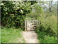 SO5113 : Gated bridge, Wye Valley Walk, Dixton, Monmouth by Jaggery
