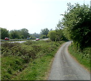 SO5213 : Newton Court Lane near Monmouth by Jaggery