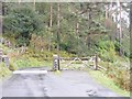 NY2322 : Newlands Road Cattle Grid by Gordon Griffiths