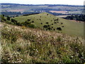 SP9616 : Gallows Hill from Ivinghoe Beacon by Peter S