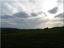 SY9482 : Knowle Hill, evening by E Gammie