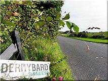 H4761 : Damaged sign, Derrybard Road by Kenneth  Allen