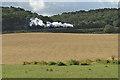 TG1142 : Steam train to Holt by Pauline E
